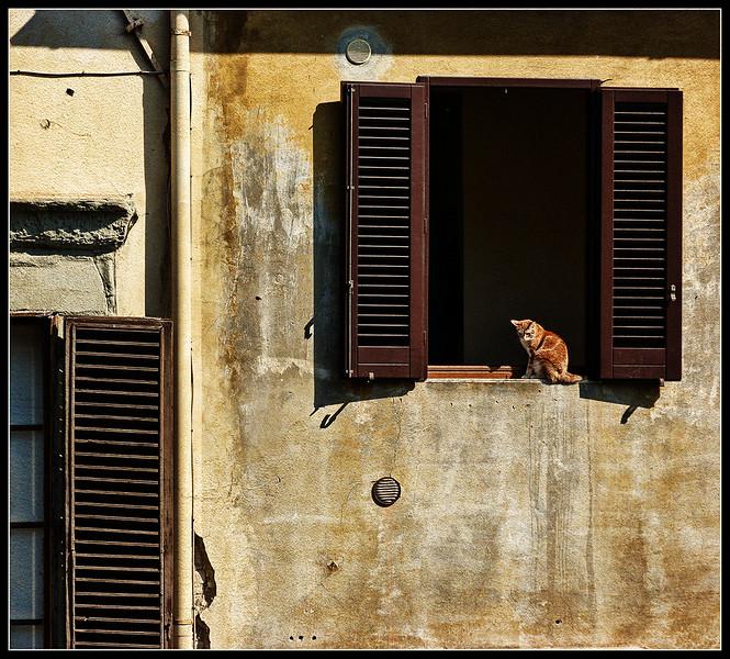 2011-02-Firenze-C293par.jpg