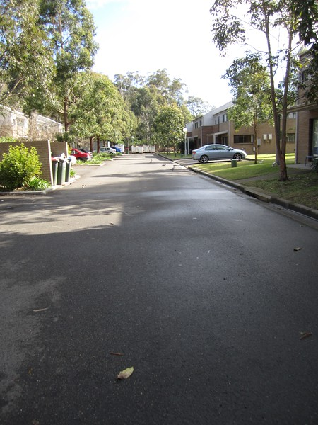 Sydney - Macquarie Uni-28.JPG