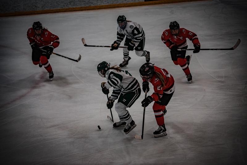Holy Family Girls Varsity Hockey vs. Mound Westonka, 12/10/19: Sydney Paulsen '20 (2)