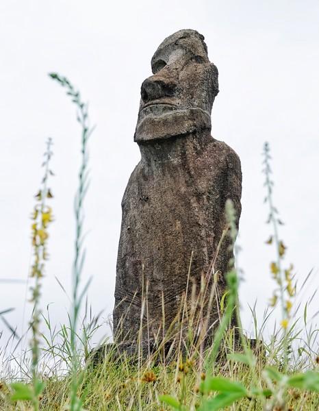 Easter Island 2020  (Lauren and BJ)