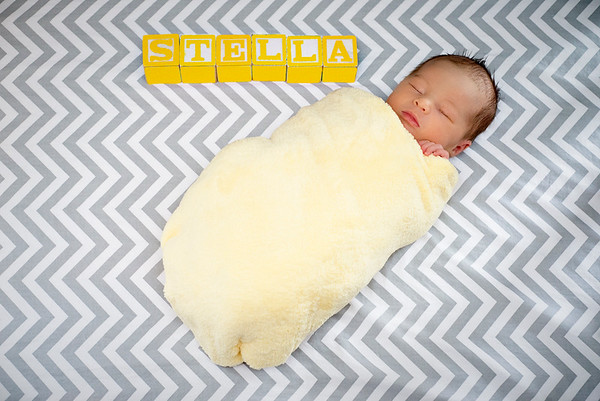 Williamsport Newborn Photographer : Welcome Baby Stella!