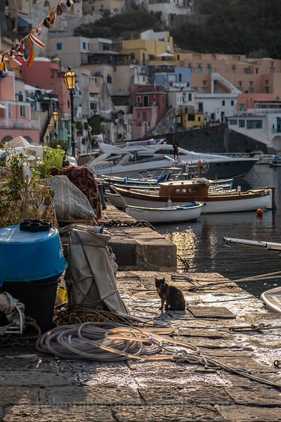 Naples & Procida all-227.jpg