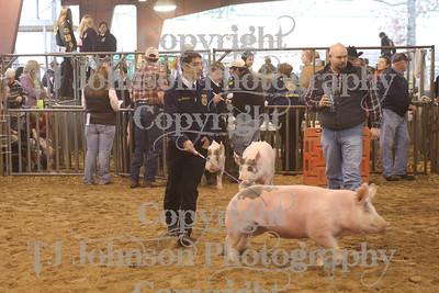 2010 KISD Class 5 Swine