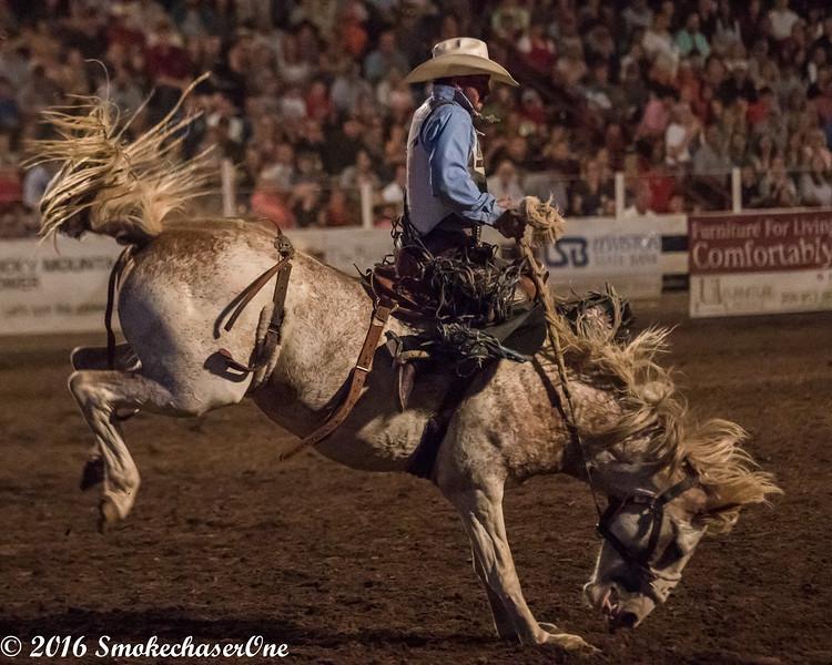 Preston Rodeo_2016
