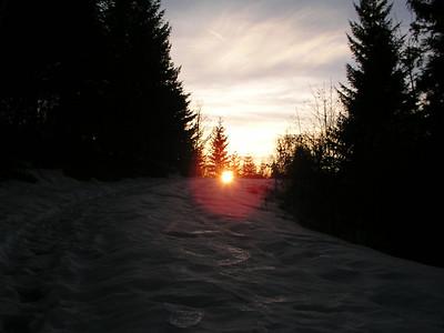 2004 Stefanek