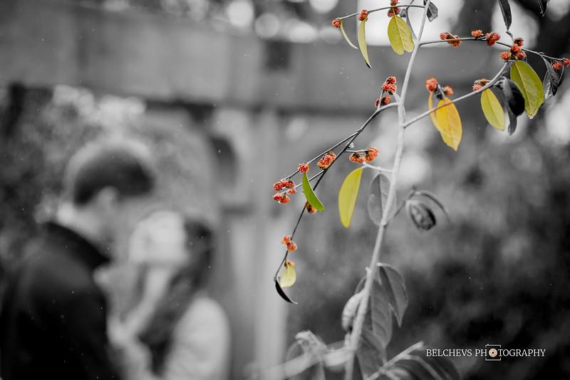 Jessica-Dima-Eng-071.jpg