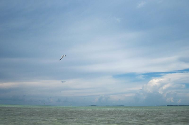 paddling to indian key-13.jpg