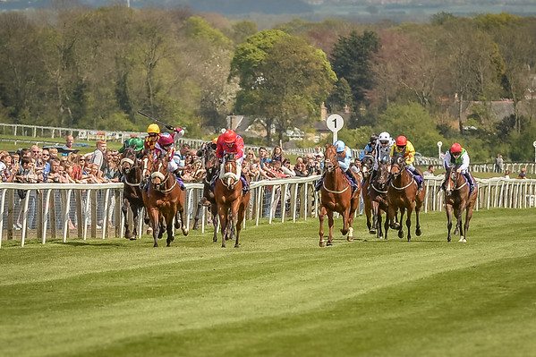 Beverley, May Day Raceday, 4th May 2015