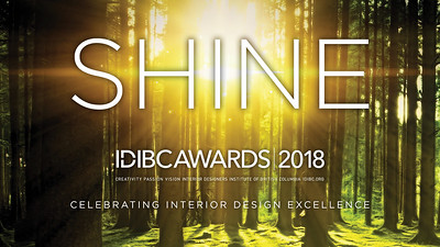 2018 IDIBC Shine Awards
