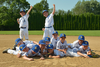 Lake Forest Baseball Association 9u