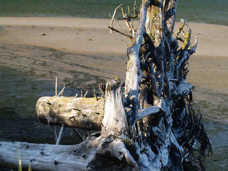 On Sandy Beach