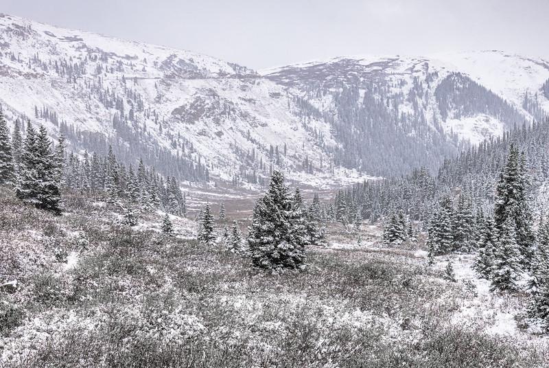 Winter Independence Pass, Colorado