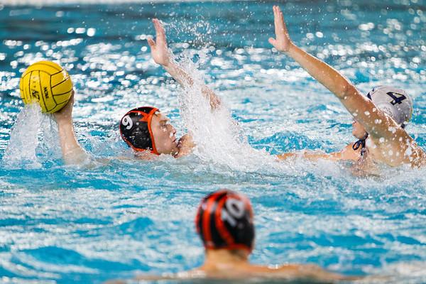 Princeton Water Polo NCAA Championship