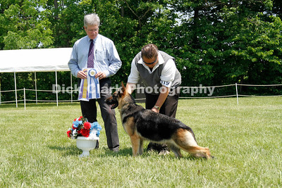 2011 German Shepherd Dog Club Greater Cincinnati Specialty