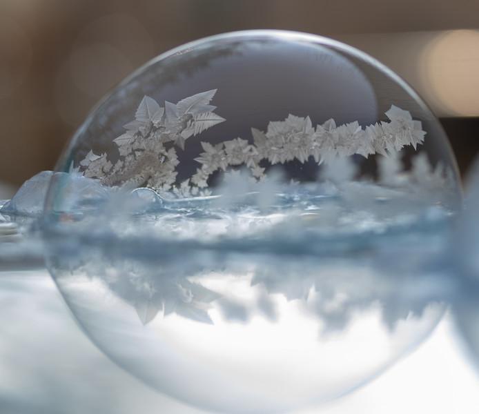 20190130-FrozenBubbles-Set2-1.jpg