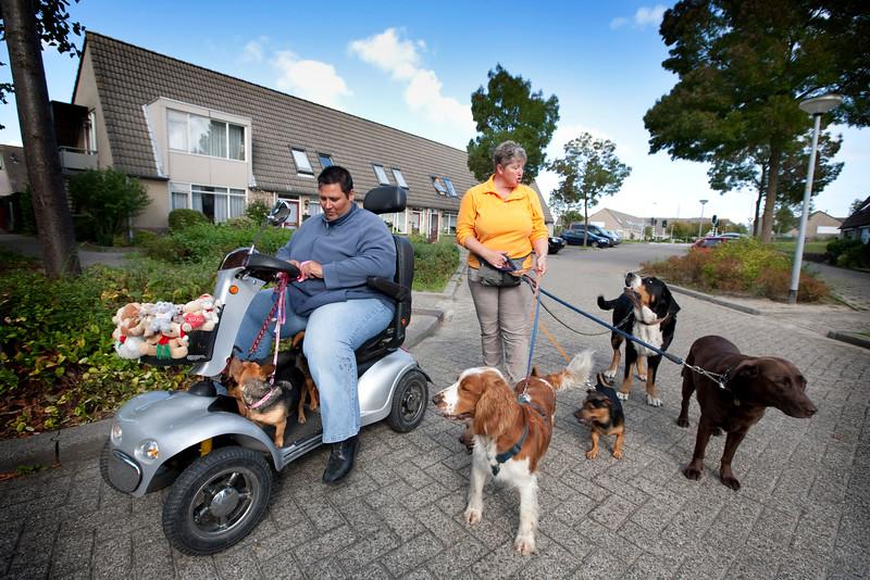_MG_7265Stedenwijk Almere honden uitlaten.jpg