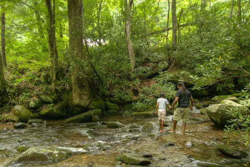 A father helps his younger daughter cross a shallow creek along the Roaring Fork Motor Nature Trail at the Great Smoky Mountains National Park in Gatlinburg, TN on Sunday, August 4, 2013. Copyright 2013 Jason Barnette