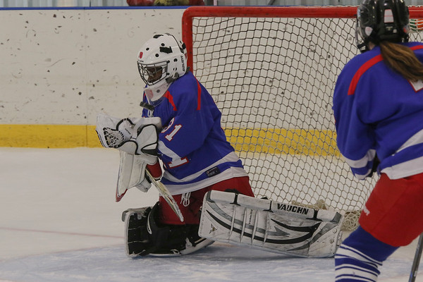 Girls'  JV Hockey vs. St. Paul's | January 13