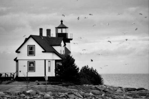 Maine Images #2