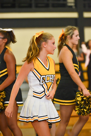 Fans, Students, and Pep Rallies