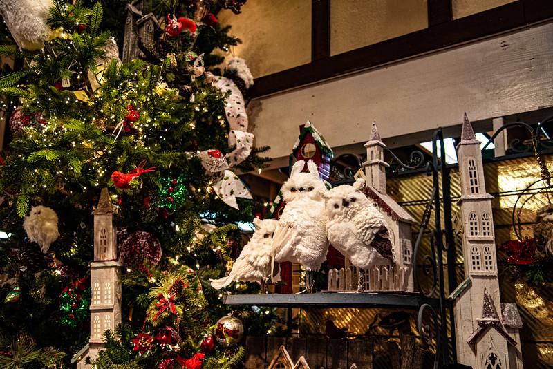 CB Christmas 19-3385.jpg