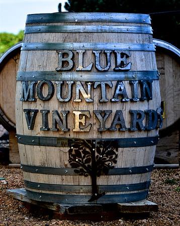Blue Mountain Vineyard, 5-30-2018