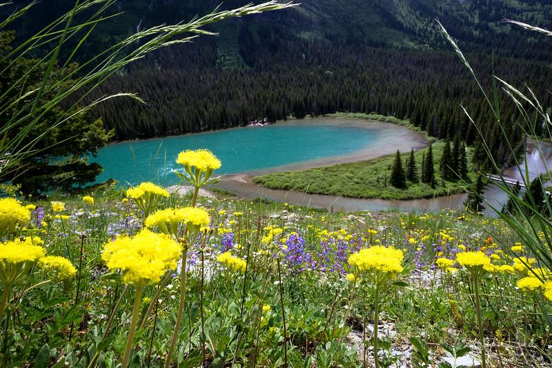 150614_grinnell_glacier_hike_lake_josephine_8086.jpg
