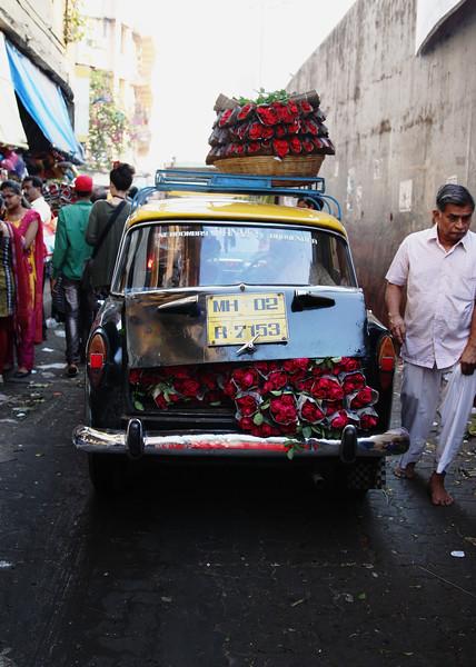 roses_mumbai_2469.jpg