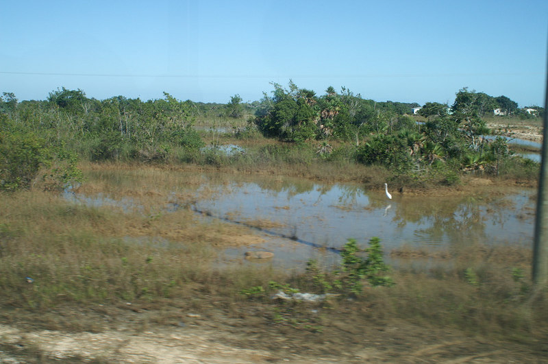Belize City - Wednesday, Dec 27, 2006, Day 5
