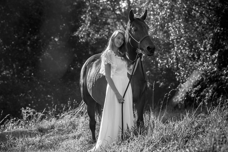 20140917_paard_0051.jpg