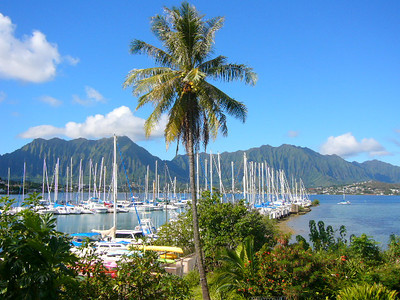 2014 Kaneohe Events