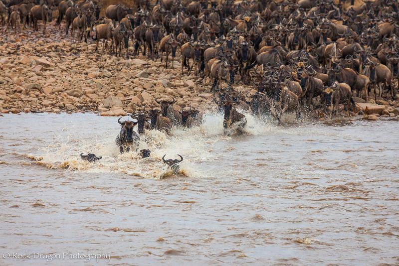 North_Serengeti-50.jpg