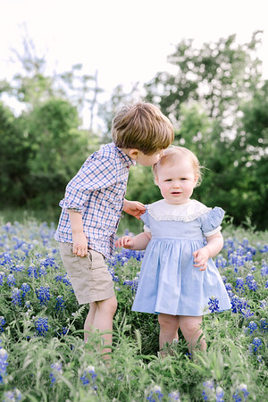 Barlow Bluebonnet Chosen Favorites