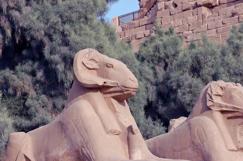 Karnak Temple 01.08.06 0005.jpg
