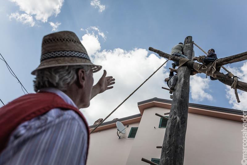 Preparazione dei pilastri che serviranno per alzare il Maggio. Le difficili operazioni sono presidiate dai più anziani, custodi di tecniche arcaiche.