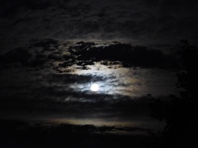 Aug Moon 2018