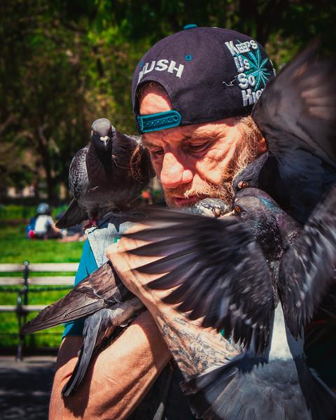 209 (8-7-19) Larry the Pigeon man Birdman-1-4.jpg