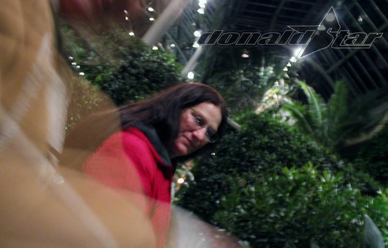 Longwood Gardens 2012-01-06 116.JPG