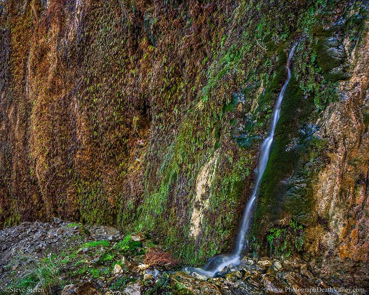 Death Valley Maidenhair Fern Falls Canyon