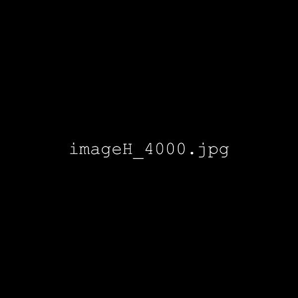 imageH_4000.jpg