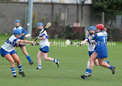 Camogie 26-10-2014