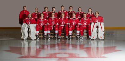 Bergen Icehockey 2016-2017 (U20)