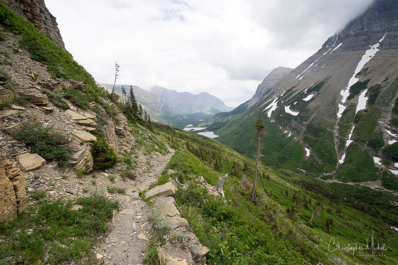 150615_Red_Rock_Falls_to_Swiftcurrent_Pass_9649.jpg