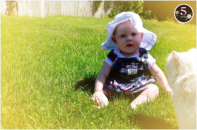 1 Vittoria 5 Months in June at Grandma Tennilles.jpg
