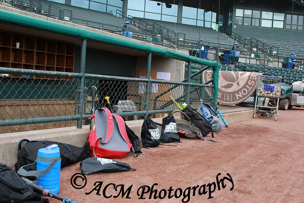 Charleston Riverdogs Baseball Camp June 2018