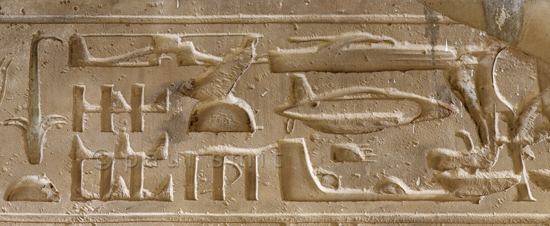 "[Egypt 29852] 'The ""helicopter inscription"" at Abydos.'"