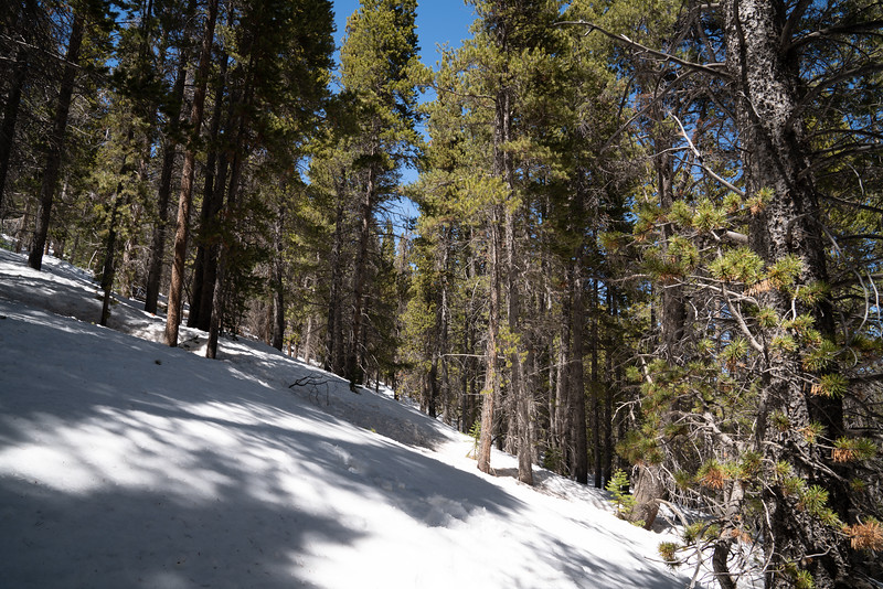 Land For Sale | Lion Efficiency St. Mary's Glacier Images