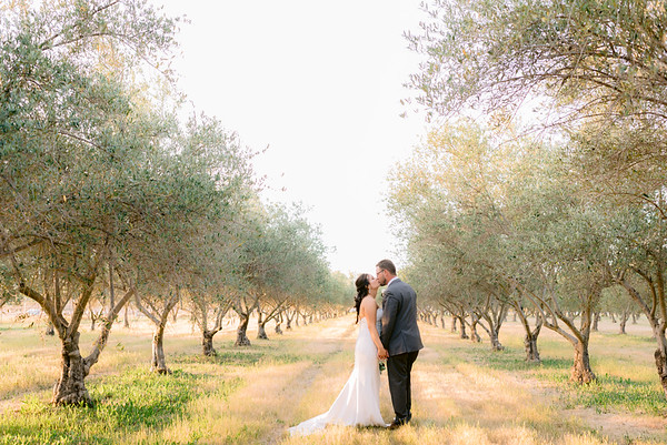 Will and Janette: Wolfe Heights