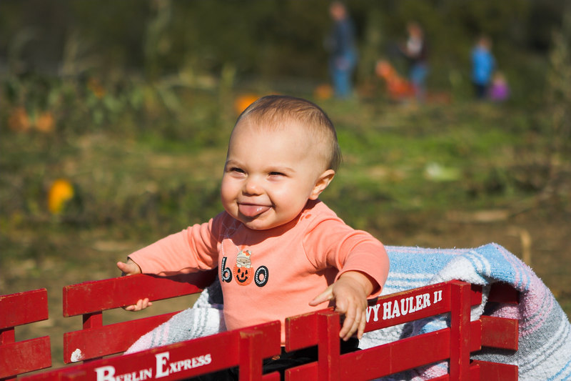 Pumpkin picking at Ramsey's Farm.  KC really enjoyed going for a ride in the wagon.