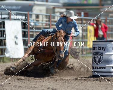 Rodeos 2010 thru 2020